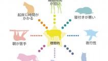 ねむり動物タイプ
